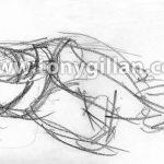Draw016_fi05_97