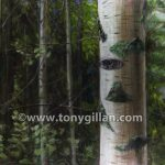Paint027_silverbirch_07